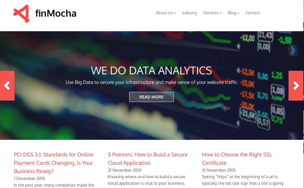 finMocha website